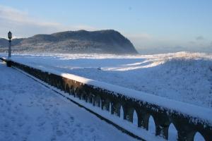 Snowday 1-11-07 008